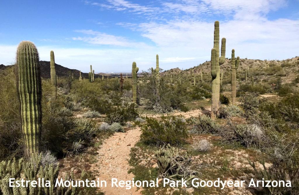 Goodyear Arizona Estrella Regional Park Hiking 1280 838