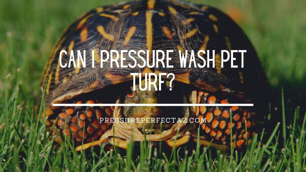 Can I Pressure Wash Pet Turf?
